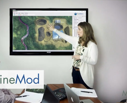 Image for MineMod: Helping managers make the right decisions for their mine